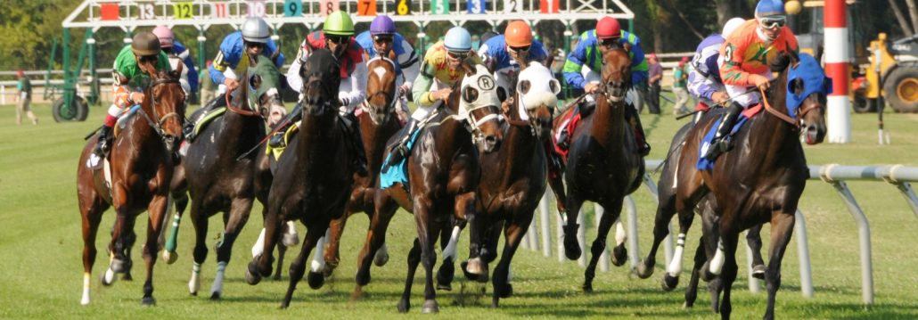 Vic Monte Free Horse Racing Picks Friday January 5th